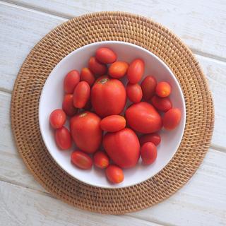 receitas-com-tomate